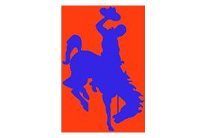 Brownsville Porter Cowboys