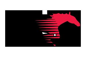 Shallowater Mustangs