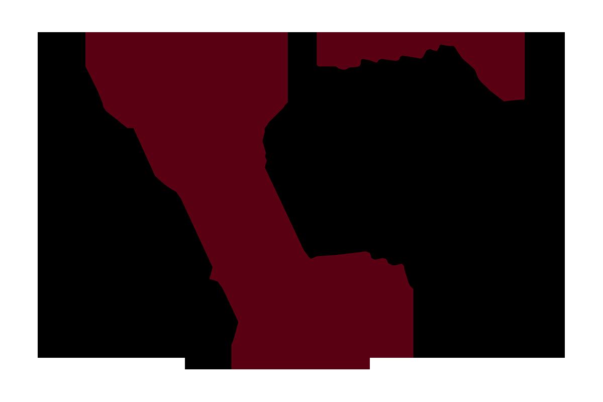 Vernon Lions